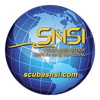 SNSIのロゴ